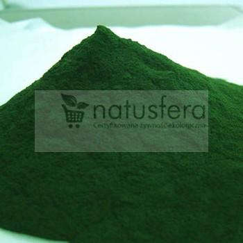 Chlorella  - sklep internetowy - proszek- algi w proszku - 500g (kuracja na 6 m-cy)