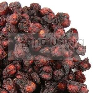 Cytryniec chiński suszony - sklep internetowy - schisandra - wu wei zi - 1kg