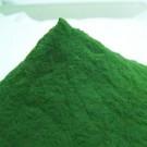 Spirulina w proszku sklep internetowy - algi proszek - 500g